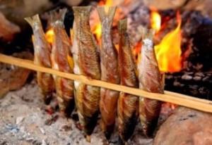 Cá suối nướng Quảng Bình